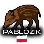 Pabl0ZIk__